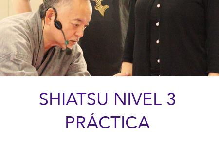 SHIATSU NIVEL 3